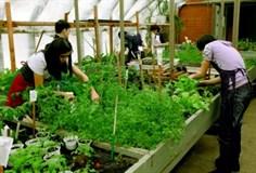 Оборудование для мастерской агропромышленного профиля/ сити-фермерства