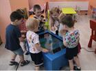 НОВИНКА для современного оснащения детских садов и школ! Развивающие сенсорные детские столы от компании Доступная страна.