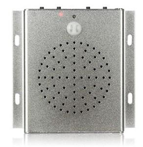 Антивандальный звуковой маяк-информатор DS105