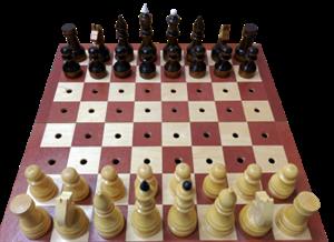 Шахматы тактильные