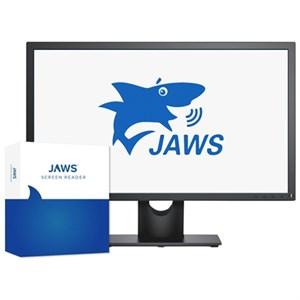 ПО экранного доступа JAWS for Windows 2019 Pro